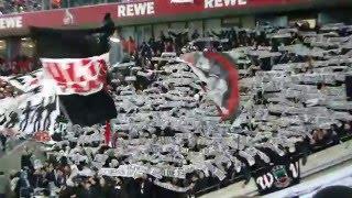 1. FC Köln - Eintracht Frankfurt 13.02.2016