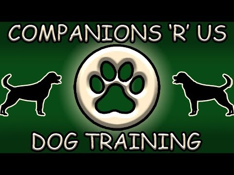 Companions R Us Dog Training by Tom Fisher