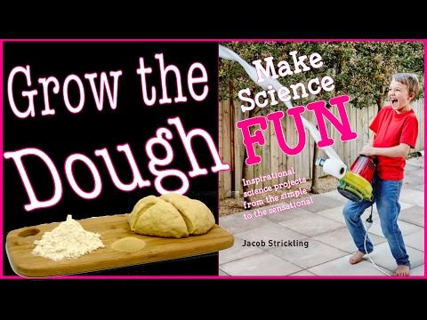 8. Grow the Dough | Make Science Fun the Book