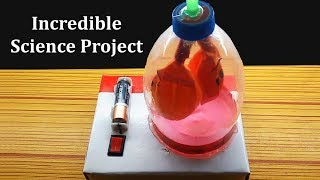 Download Best Ever Incredible Project of Electric Lungs Working Model, Easy Science Fair Projects for you Video
