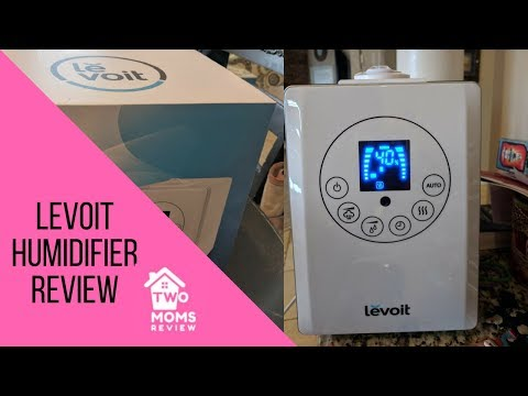 Levoit Humidifier Review - Warm & Cool Mist Humidifier