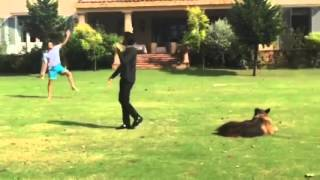 VIDEO: Imran Khan plays cricket with family