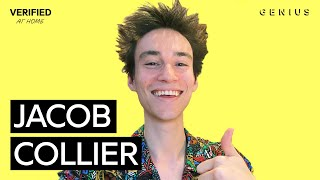 """Jacob Collier """"All I Need"""" Official Lyrics & Meaning 