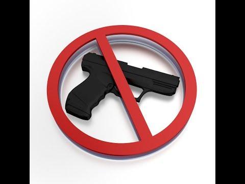 Bill To Establish Gun Registry, Limit Purchases to 1 Gun per Month
