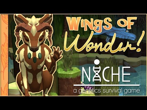 Search for the Golden Feather!! 🐦Niche: Wings of Wonder • #1