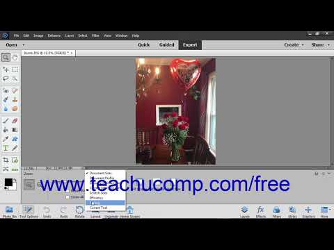 Photoshop Elements 2019 Tutorial Viewing Document Information Adobe Training