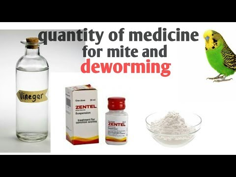 How to control mite problem and deworming of bird--know the quantity