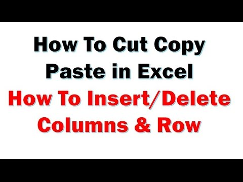 Excel 2013 Tutorial- How To Copy Cut Paste (Insert and delete  column, row)