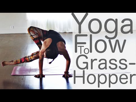 Yoga Flow to Grasshopper With Fightmaster Yoga