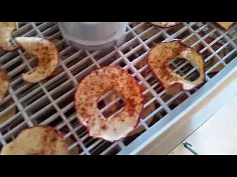 Making apple chips using a food dehydrator