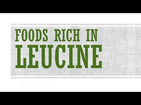 Foods Rich in Leucine - Foods High in Amino Acid - BENEFITS OF WELLNESS