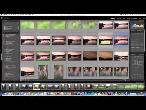 How to use Adobe Lightroom Collections