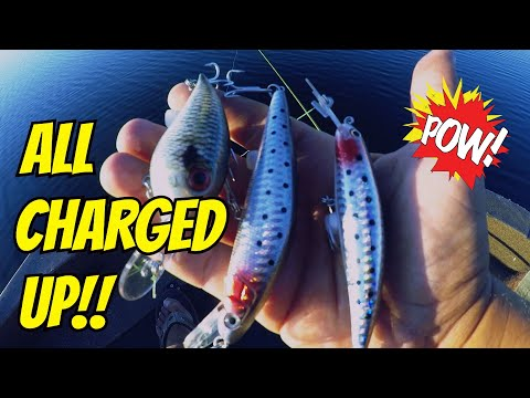 Bass Fishing with ELECTRONIC Lures!! Is This the FUTURE of FISHING?? (SURPRISING!)