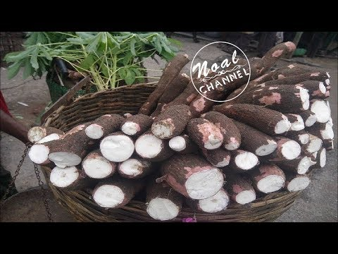 Process Of Making Cassava Flour by Manual Method - Cassava processing line