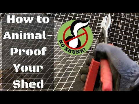 How to Animal-Proof a Shed (Skunk/Possum/Raccoon/Rodent/Groundhog/Squirrel)