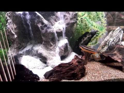 My Aquarium Waterfall Sandfall
