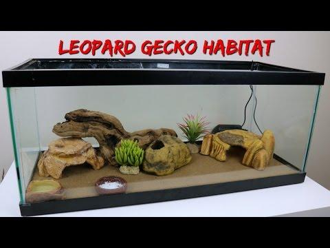 SETTING UP MY LEOPARD GECKO'S NEW HABITAT