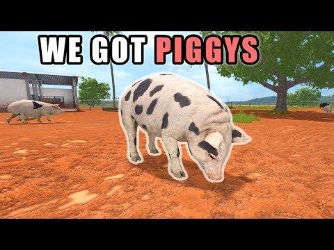 BUYING PIGS & CANOLA HARVEST | Farming Simulator 2017