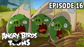 Angry Birds Toons - Double Take  (Ep16 S1)