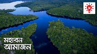 আমাজন বন | কি কেন কিভাবে | Amazon Rainforest | Ki Keno Kivabe