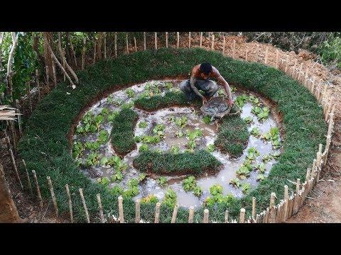 Primitive Daily Life: Building Mini fish Pond