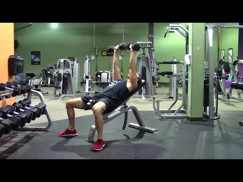 Beginner Weight Training in the Gym - HASfit Strength Training Beginners Resistance Training