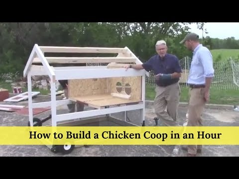 How to Build a Chicken Coop in an Hour