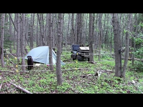 Make Your Own Camp Bear Fence