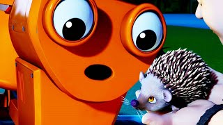 Bob the Builder US | New Episode Best of Dizzy | Full HD Episodes 1 Hour Compilation | Kids TV Shows