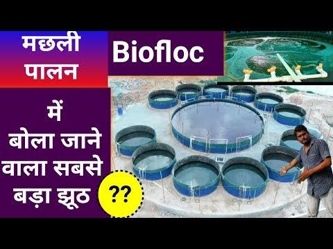 जानिए biofloc के बारे में पूरी