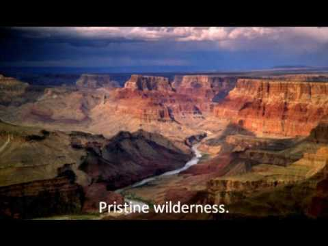 Papillon Grand Canyon Helicopter Reviews