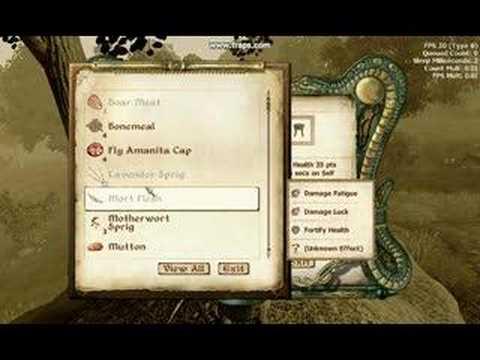 Oblivion - making potions