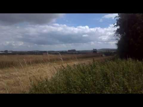 Harvest Time - Rapeseed  Aug 2013  - Faversham Kent .