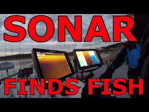 How to use Sonar to catch White bass, lake Belton January 2018