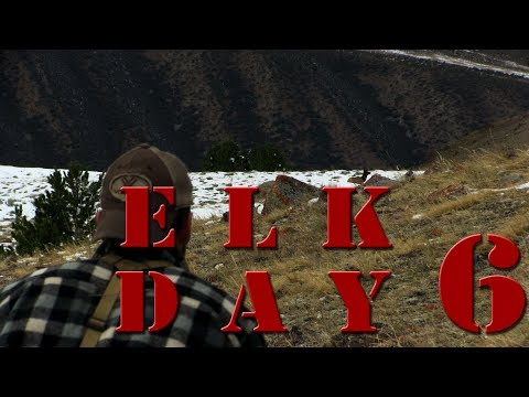 Recurve Bow Hunting Elk on Public Land with Clay Hayes - DIY Archery Elk Day 6