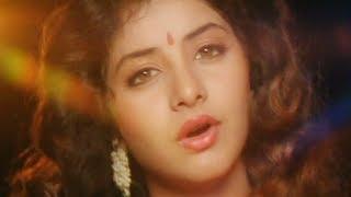 Geet - Part 10 Of 11 - Avinash Wadhvan - Divya Bharti - 90s Bollywood Hits