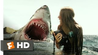 The Shallows (6/10) Movie Clip - 30 Seconds (2016) Hd