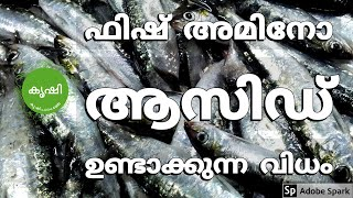 Fish Amino Acid Preparations and Usage - ഫിഷ് അമിനോ ആസിഡ് ഉണ്ടാക്കുന്ന വിധം