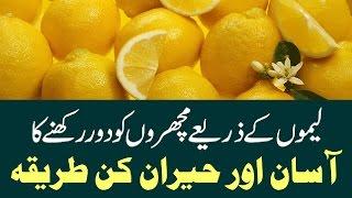 Lemon K Zariye Machar Bhagane Ka Totka | لیموں کے ذریعے مچھر بھگانے کا ٹوٹکہ