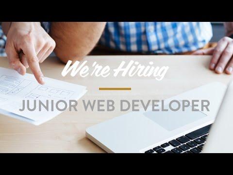 How To: Write a Junior Software Developer Resume - MGTOW
