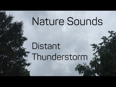 Nature Sounds of a Distant Thunderstorm & Rainfall for Relaxing Ambience