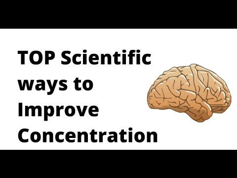 Top Scientific Ways To Improve Your Concentration