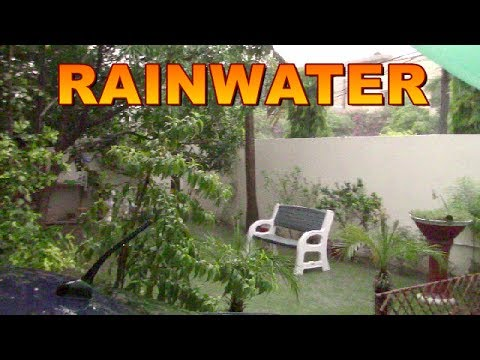 RAIN WATER BENEFICIAL FOR PLANTS II GARDEN OVERVIEW