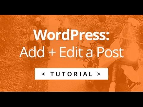 Posting / Blogging With WordPress - A tutorial for Johan Fleischer.