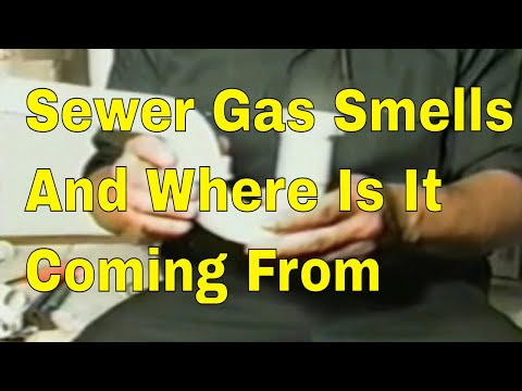 Sewer Gas Smells 👍👍👍