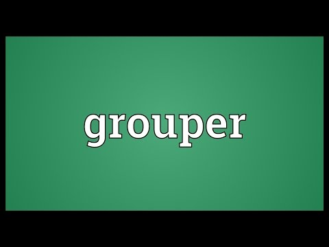 Grouper Meaning