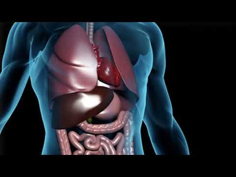 Lie Down Is Best Home Remedy To Treat Gas In Chest- How TO Do