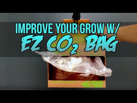 How to Generate Co2 for Plants in your Grow Room | EZ CO2 Bag Review