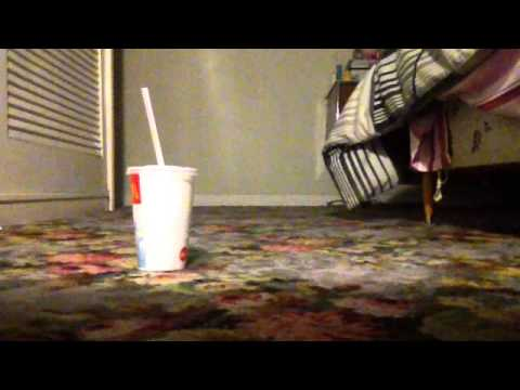 How to make a cup move without touching it