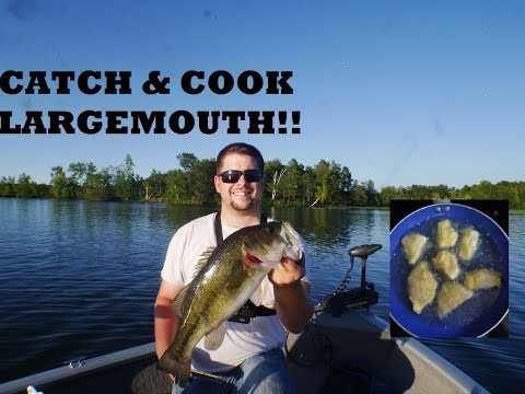 Catch and Cook Largemouth Bass